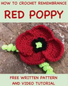 red-poppy-pin-eng.jpeg